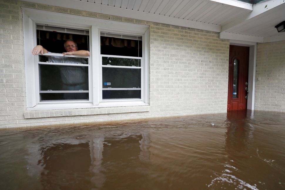 Obrad Gavrilovic peers out the window of his flooded home while considering whether to leave with his wife and pets, as water
