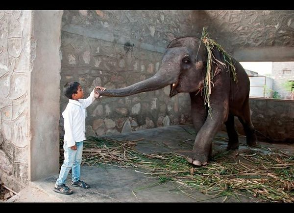 <em>Photo Credit: Elenatur | Dreamstime.com</em>