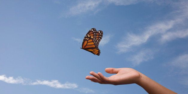A woman's outstretched hand gently releases a monarch butterfly into the sky