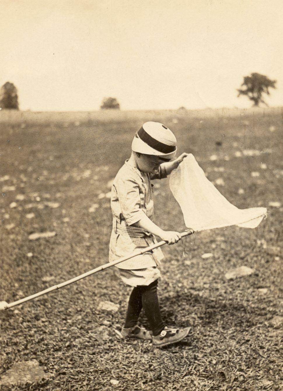 A young boy plays in a field with a butterfly net, Ulysses, Pennsylvania, 1913. (Photo by Vintage Images/Getty Images)