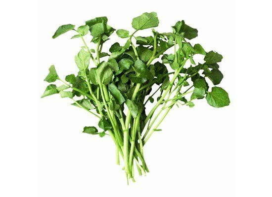 Watercress is an aquatically grown lettuce that has long hollow stems with round lobed leaves. It has a peppery taste. Enjoy