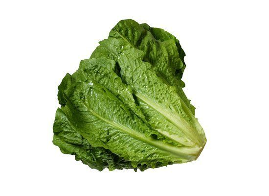 Romaine (a.k.a. Cos) is exceptionally crisp and slightly bitter. It has long, narrow leaves with thick ribs. The most flavorf