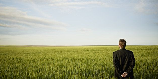 Businessman standing in wheat field looking out