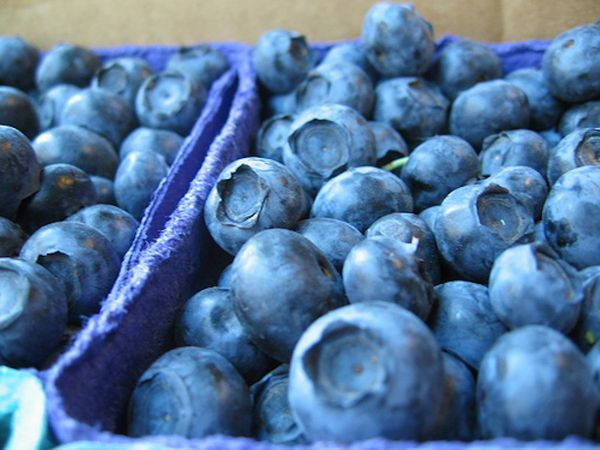"""Blueberries get their bright blue pigment from a class of antioxidants called anthocyanins, which fight inflammation. """"<a hre"""