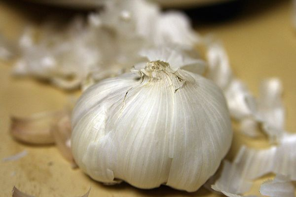 """Garlic is often touted for its medicinal properties. The vegetable can add <a href=""""http://www.ncbi.nlm.nih.gov/pubmed/242372"""