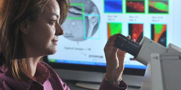 Argonne's Center for Nanoscale Materials Scientist Elena Rozhkova examines brain cancer cells under a microscope. Rozhkova, a