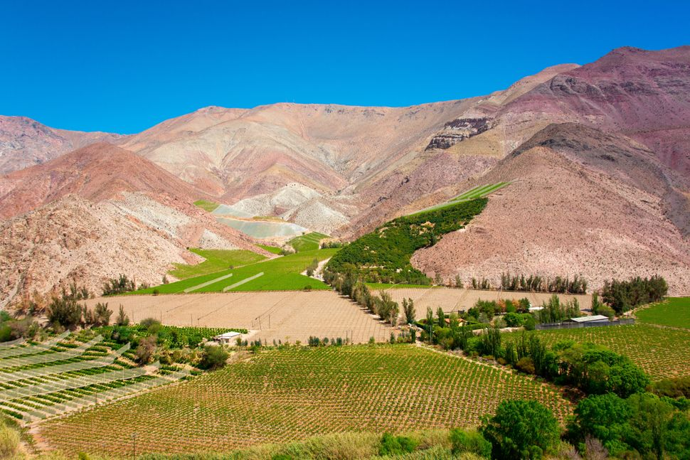 """Known for its clear skies, the Elqui Valley has <a href=""""http://www.telegraph.co.uk/travel/destinations/southamerica/chile/10"""
