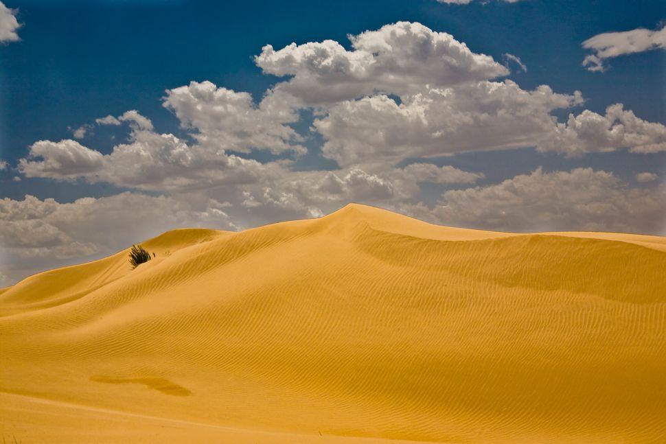 "Described as ""<a href=""http://www.nbcnews.com/id/8964718/ns/travel-destination_travel/t/mellow-mongolia/#.VUavr9p3m8o"" target"
