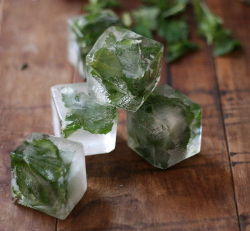 """Just like that, things got fresh. (<a href=""""http://www.17apart.com/2012/07/how-to-mint-infused-ice-cubes.html"""" target=""""_blank"""