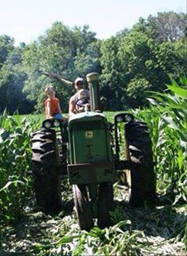 """""""My husband taking our boys in 'his office' a tractor. They spend a lot of hours there."""""""