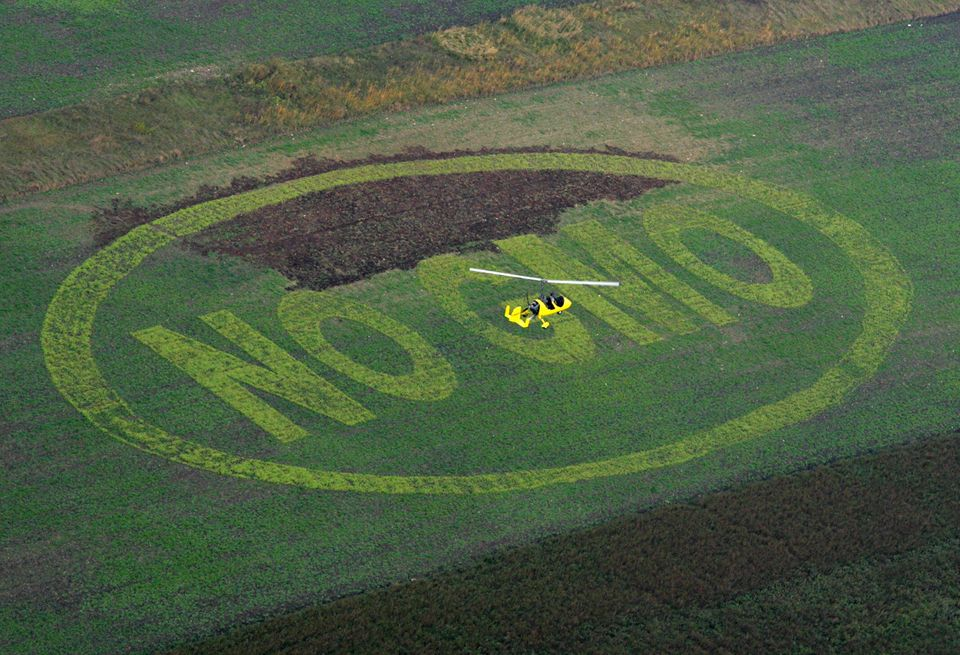 A picture taken on October 9, 2008 shows an ultralight helicopter hovering above a field where Greenpeace activists and Austr