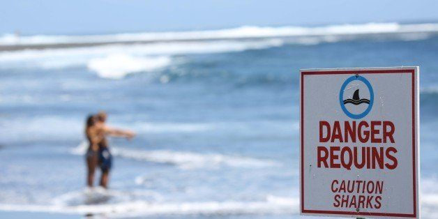 A couple stands on the beach near a sign reading 'Caution Sharks' in Etang-Sale, a region of the La Reunion island French territory on October 27, 2013 a day after a 24-year-old man was attacked by a shark. The young man had his leg severed in the attack as he swam fifteen meters away from the shoreline. The latest attack follows a string of shark attacks on the island in recent years. AFP PHOTO / RICHARD BOUHET        (Photo credit should read RICHARD BOUHET/AFP/Getty Images)