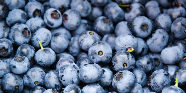 From Larsen Lake Blueberry Farms, a bucket of freshly picked blueberries.