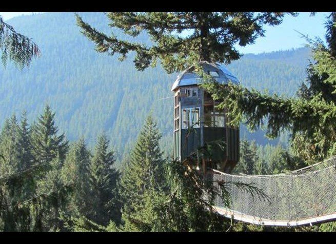 10 Incredible Tree House Hotels In The U S Huffpost Life