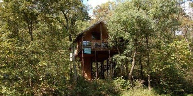 10 Incredible Tree-House Hotels in the U.S.