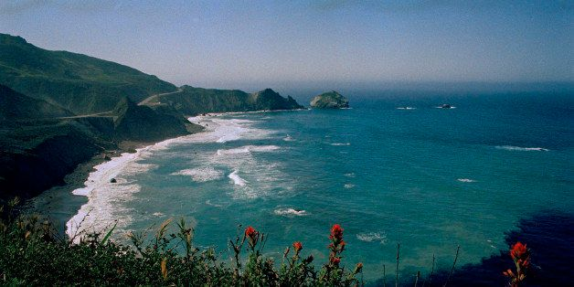 Wildflowers underscore the Pacific coast at Big Sur, Calif., is shown in this undated photo. (AP Photo)