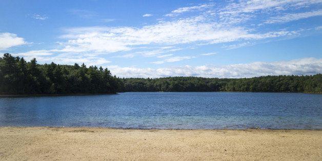 Shoreline and kettle pond in Walden Woods, Massachusetts.