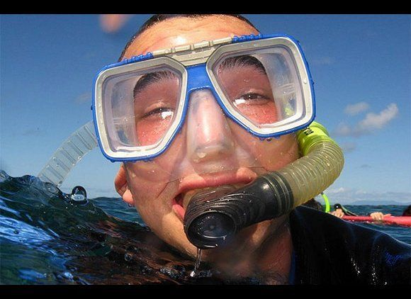 Let's talk about snorkel rentals. Yes, of course they're cleaning them, but snorkels go inside your mouth. Would you share a