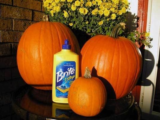49 Incredible Diy Pumpkins You Ve Got To Try This Year