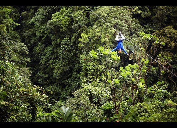 Trek through the rainforest, swim under waterfalls, relax on the beach, and see some of the country's over 500,000 species. C
