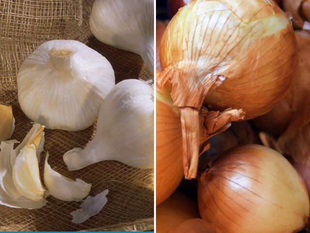 Surprising Health Benefits Of Garlic And Onions | HuffPost Life