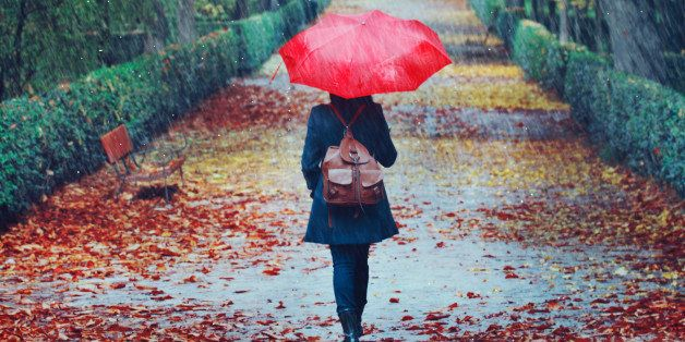 Woman walking in the rain with umbrella on straight hedged alley path in autumn with green, red and yellow leaves on the trees and ground around her.