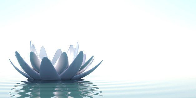 A Zen lotus flower in clam water on white background