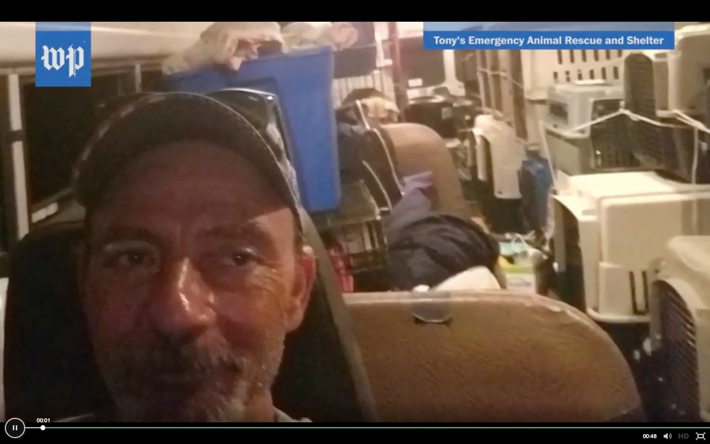 Trucker Rescues Dozens Of Stray Dogs From Hurricane Florence In His School