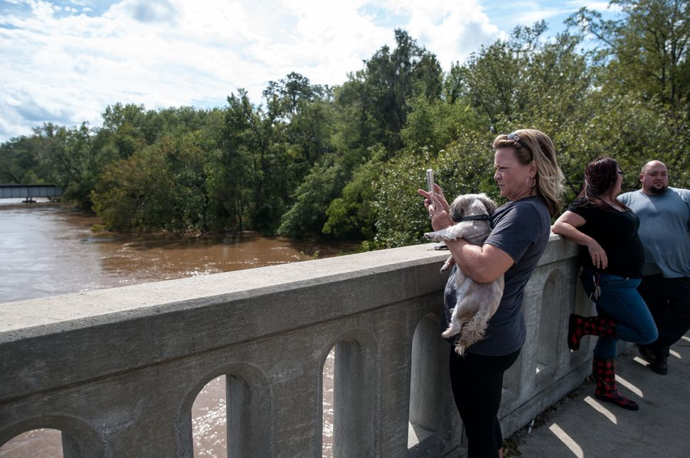 Laura Walters of Fayetteville holds her dog Abby as she takes a photo of the Cape Fear River on Monday.