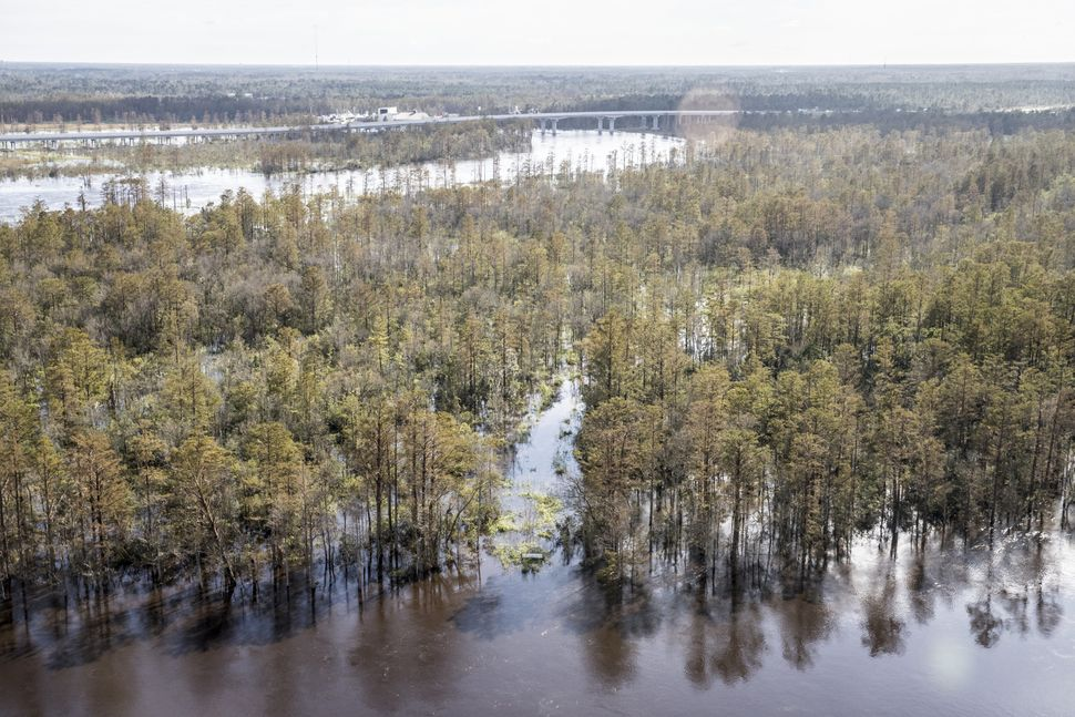 Floodwaters are seen next to the Cape Fear River in Wilmington.