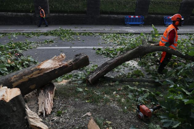 Workmen deal with a fallen tree by Glasnevin Cemetery,