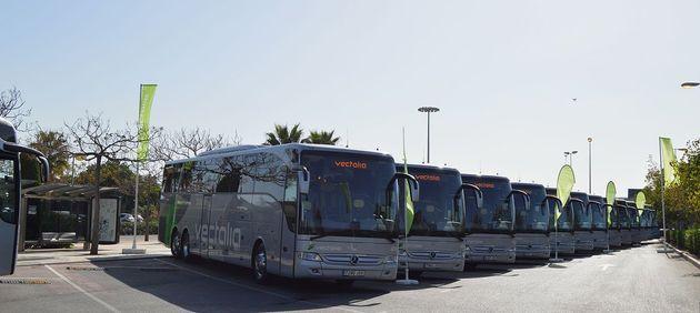 La ville de Safi se dote d'une nouvelle flotte de bus