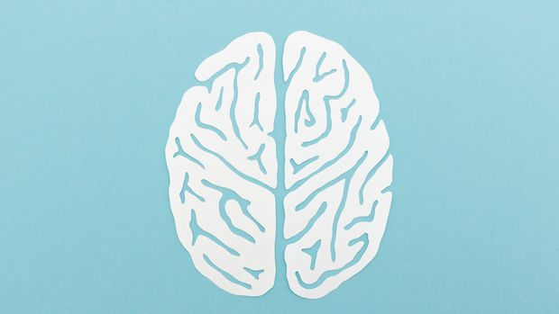 White paper cut brain silhouette on blue background