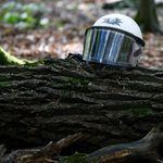 Nach tragischem Unfall: Polizei unterbricht Einsatz im Hambacher Forst