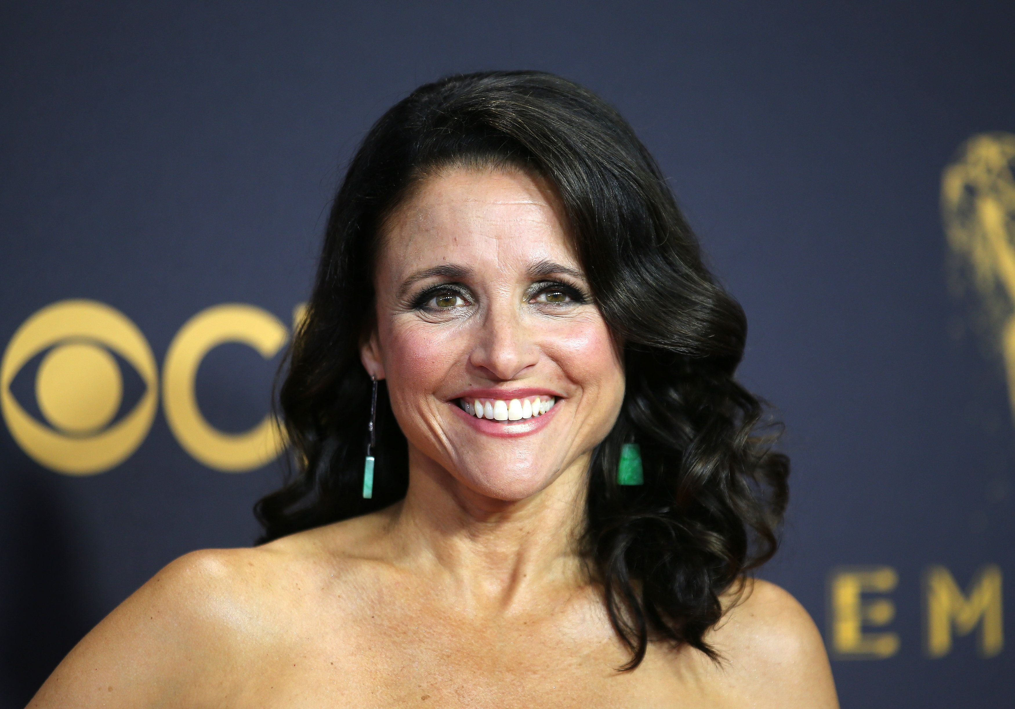 "Actress Julia Louis-Dreyfus says she ""feels good"" after completing her breast cancer treatment earlier this year."