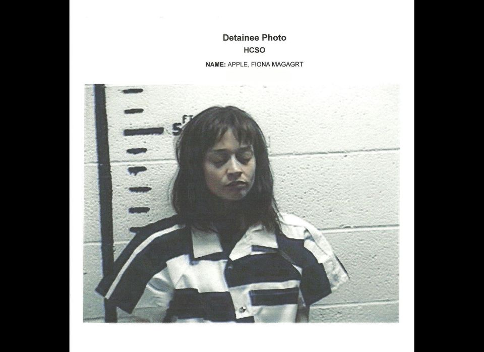Fiona Apple was arrested on drug possession charges on Sept. 19 at a border stop in Sierra Blanca, Texas. When officers searc