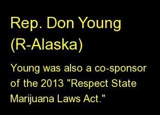 "Young was also a co-sponsor of the 2013 <a href=""http://www.huffingtonpost.com/2013/04/12/respect-state-marijuana-laws-act_n_"
