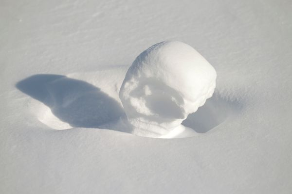 A cousin of the now doughnut, these odd-shaped natural snowballs form when high winds roll snow over open areas.