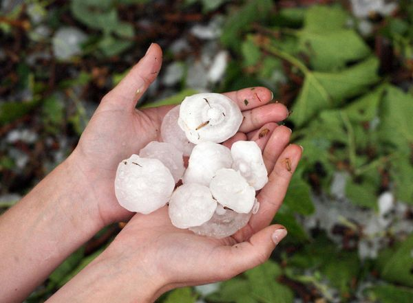 "As the name suggest, these are really, really big hailstones. They are sometimes called ""ice bombs"" and tend to shatter when"