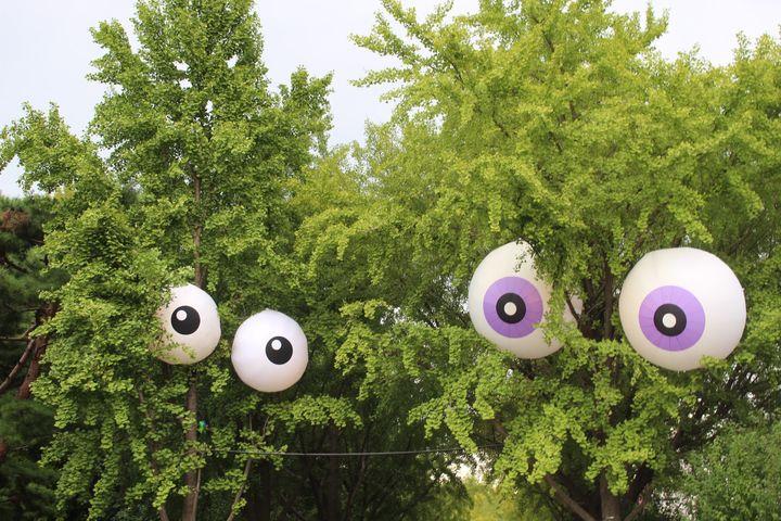 영국 출신 설치미술가 듀오 'Designs in Air'의작품. 크기 2m에 달하는 이 대형 아이볼(eyeball)은 SBI저축은행의 '은행저축 프로젝트'의 일환으로 올림픽공원 은행나무에 9월 15일부터 10월 7일까지 설치된다. 시민들과 함께 동심으로 돌아가 은행나무의 고마움과 생명의 존귀함을 깨닫자는 의미다.