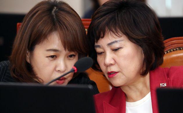 송희경 국회 여성가족위원회 자유한국당 간사(왼쪽)와 김순례