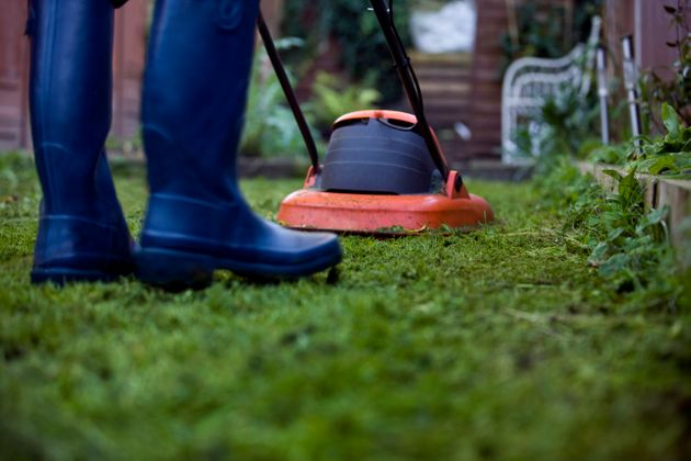 Why Gardening Is So Good For