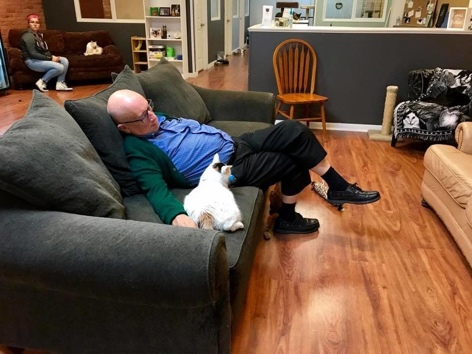 Wisconsin Man, 75, Volunteers To Nap With Cats