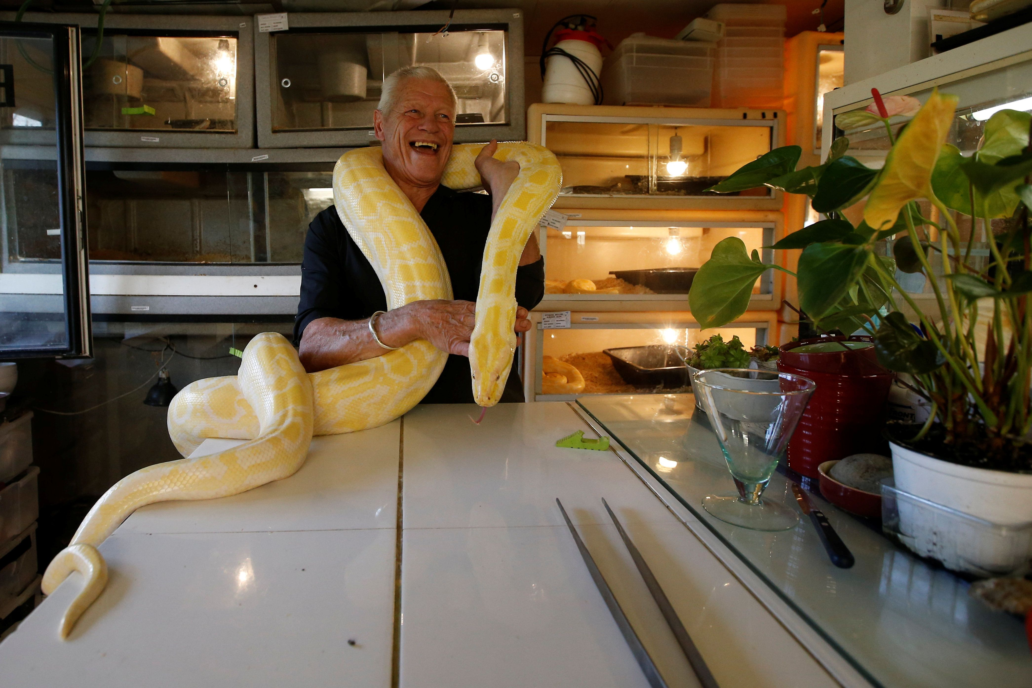 Philippe Gillet, 67 year-old Frenchman who lives with more than 400 reptiles and tamed alligators, poses with a python in his house in Coueron near Nantes, France September 19, 2018. Picture taken September 19, 2018. REUTERS/Stephane Mahe