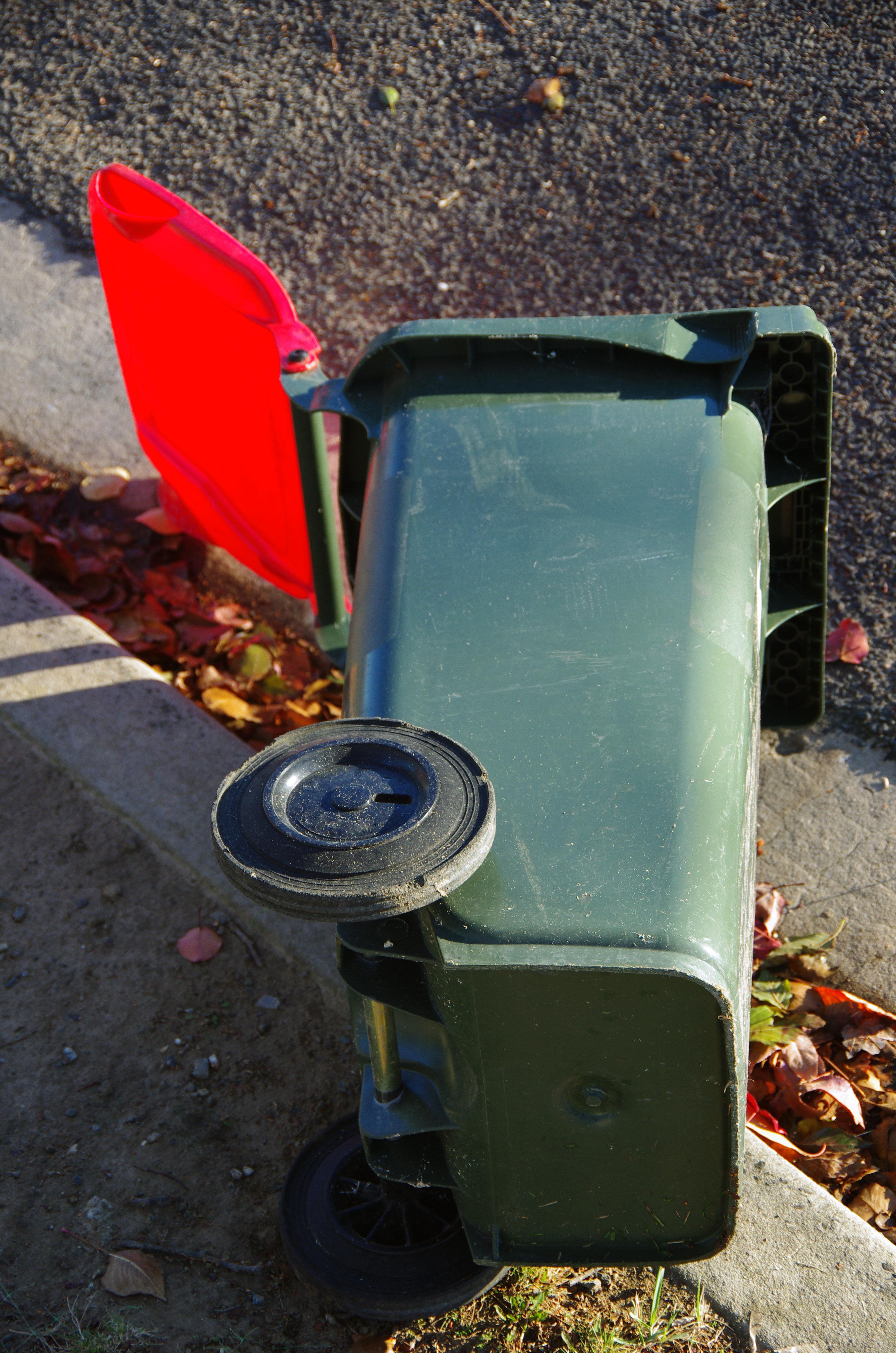 Sturm in UK: Wind schmeißt Mülltonne um und offenbart schlüpfriges Geheimnis einer