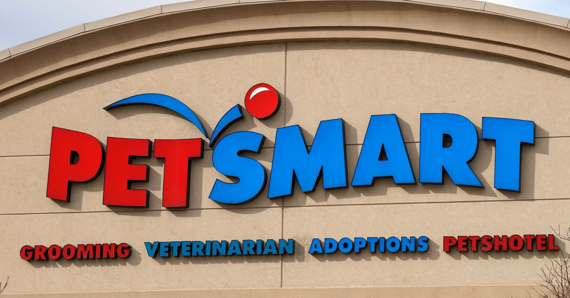 petsmart faces demand for answers after dog grooming deaths report