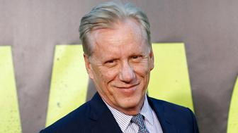 "Actor James Woods arrives at the premiere of the film ""Savages"" in Los Angeles June 25, 2012. REUTERS/Danny Moloshok (UNITED STATES - Tags: ENTERTAINMENT HEADSHOT PROFILE)"