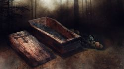 Theme Park Challenges You To Stay In A Coffin For 30