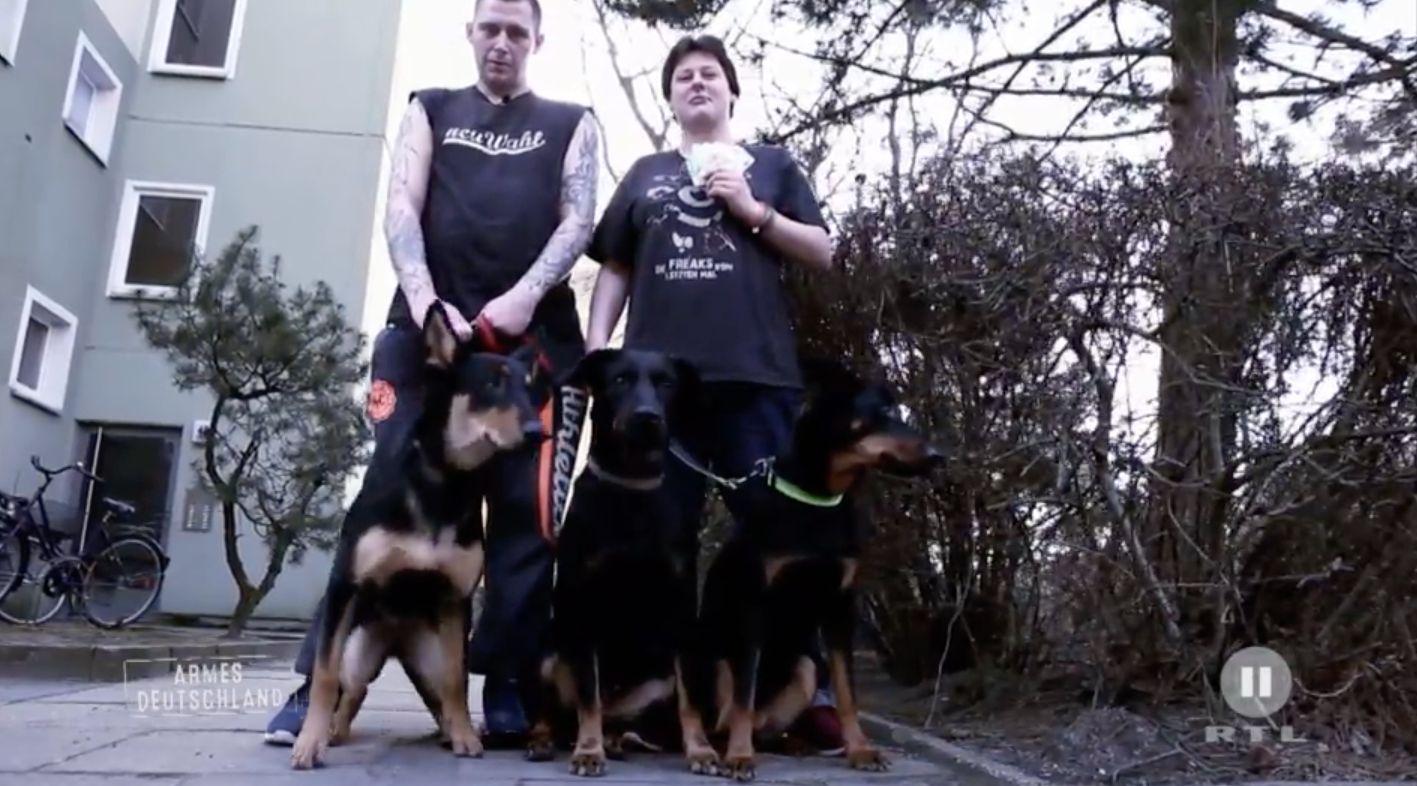 Hartz-IV-Paar präsentiert im TV seine Hunde – Zuschauer sind