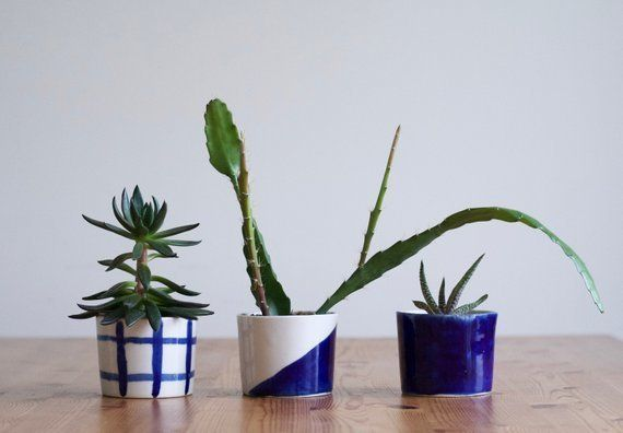 Building off of last year's wabi sabi trend, we're seeing the perfectly imperfect look of brushstrokes on items from ceramics